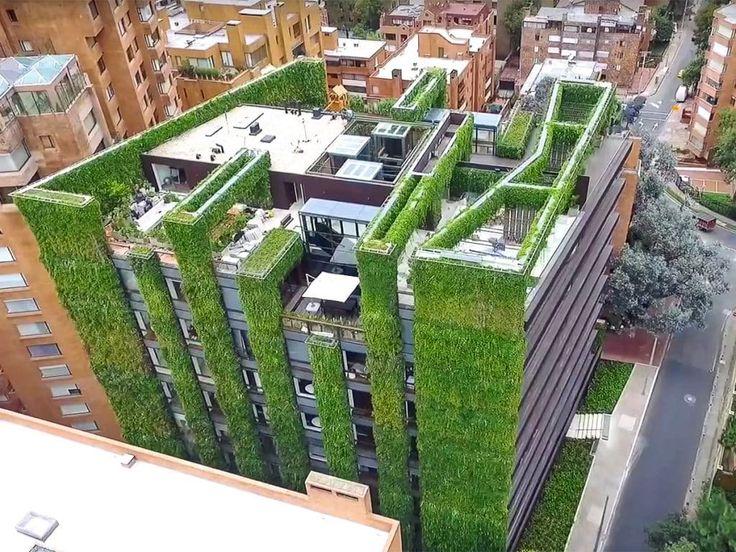 22 best Façade végétal images on Pinterest Green walls, Plant wall