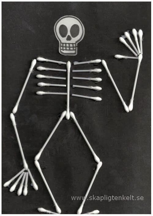 Tops-skelett