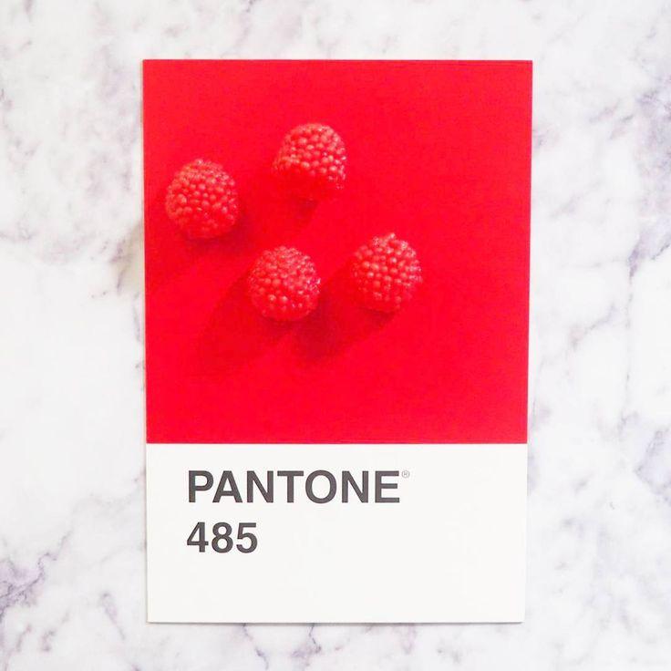 @pantoneirl - Haribo Berries x Pantone 485