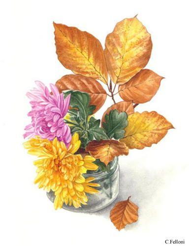 Ce sujet associe deux fleurs de Chrysanthème et un rameau de Hêtre.Le hêtre, rentré à l'intérieur évolue très vite,il vaut mieux le peindre en premier car les fleurs de chrysanthème, en revanche, restent stables quelques jours. Dans la nature, les feuillages...
