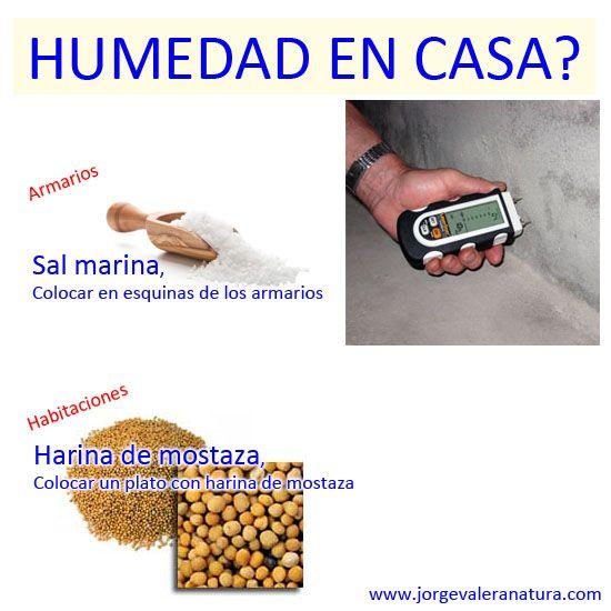 7 best problemas de humedad images on pinterest - Humedad relativa en casa ...