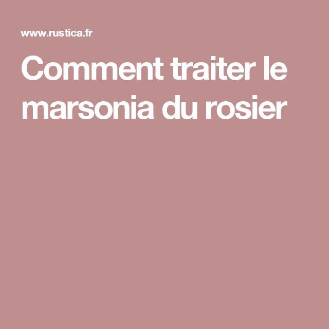 Comment traiter le marsonia du rosier jardinage - Quand et comment tailler les rosiers ...