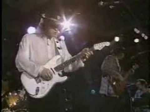Eternal LOVE:  Stevie Ray Vaughan Life Without You