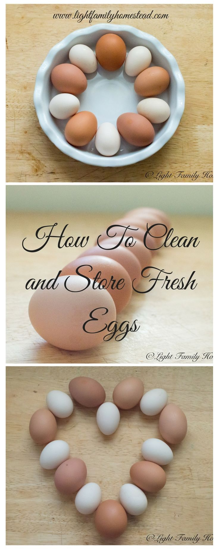 How to Clean and Store Fresh Eggs-Are you planning on raising chickens for their fresh eggs? Has a neighbor given you fresh eggs from their chickens? Check out our blog to learn how to properly wash and store your eggs. www.lightfamilyhomestead.com #fresheggs #washingeggs #chickeneggs #raisingchickens #foodstorage #eggs #chickens #hens
