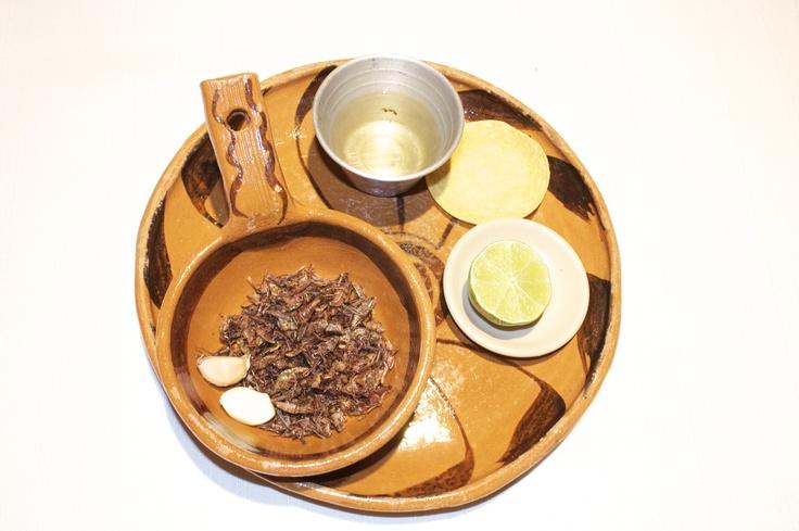 Los chapulines son insectos comestibles de color rojizo que se dan principalemente en el estado de Oaxaca, México.