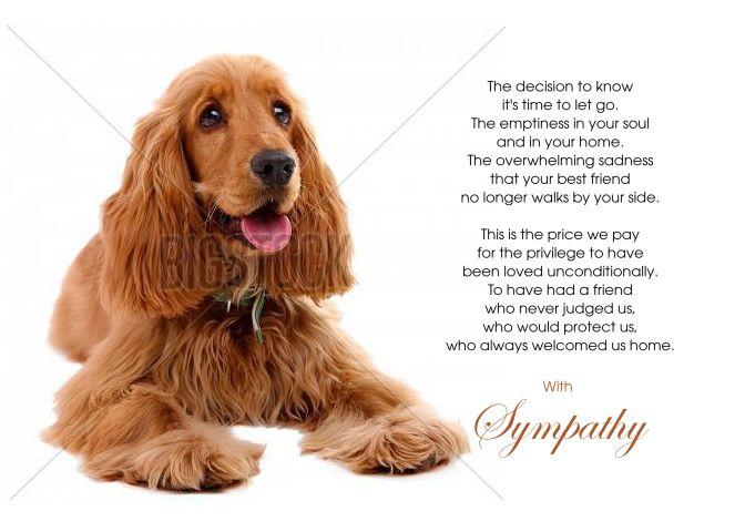 Cocker Spaniel Dog Pet Sympathy Euthanasia Card Cocker Spaniel