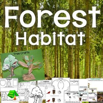 This woodland habitat unit is designed for your young wildlife biologists to learn about the animals and plants that live in the forest. It has introductory slides to teach students some background information and simple facts about the forest habitat. Students will complete activity pages about the forest habitat and will complete two 3D tree craft.