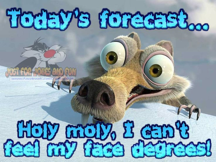 Todays Forecast Holy Crap I Cant Feel My Face Degrees!