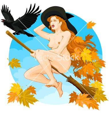 Witch flying 01 vector