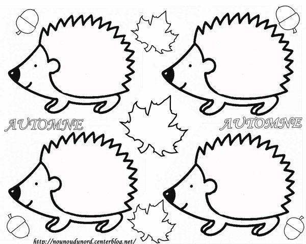 Découper le hérisson. Coller sur un carton de couleur. Prendre des feuilles mortes et les coller pour faire les épines.
