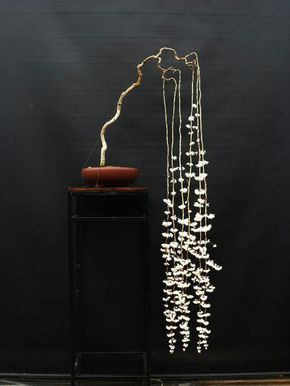 #bonsai-art #盆栽 (Via: A Jug Of Wine, A Loaf Of Bread, And Virtual Thou  ) ほぉ!これはお見事。 なんの花だろ?? 枝の造形に、サビに強いステンレス結束線はどうでしょ?メッキ結束線もあります!