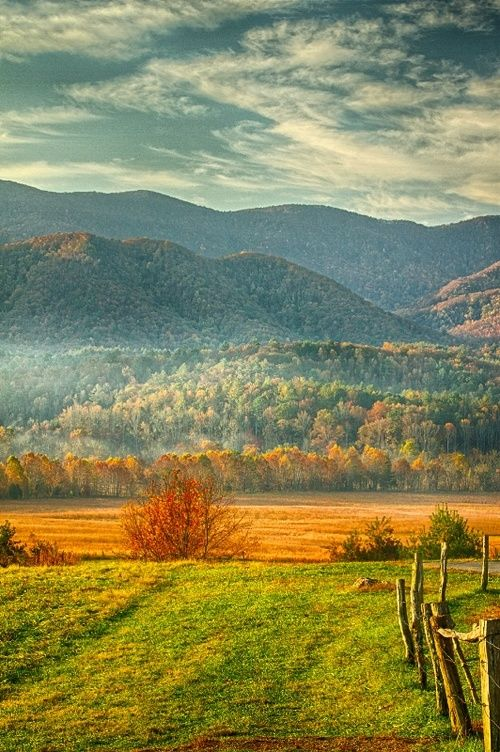 Fresh Farmhouse:  Fall Landscape At Cades Cove by Jackie M . Sajewski