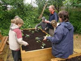 School Garden lesson learn how to set up a school garden from GrowVeg....