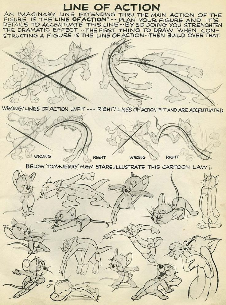 "Tom and Jerry ""line of action"" model sheet ✤ 