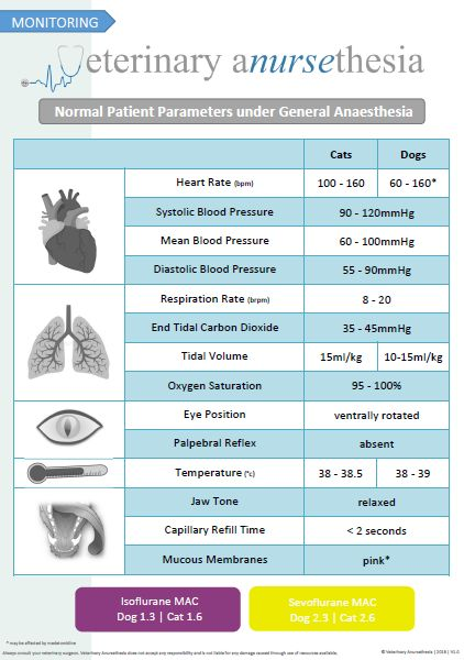 Normal Parameters during general anesthesia | Anursethesia #VetTechLife