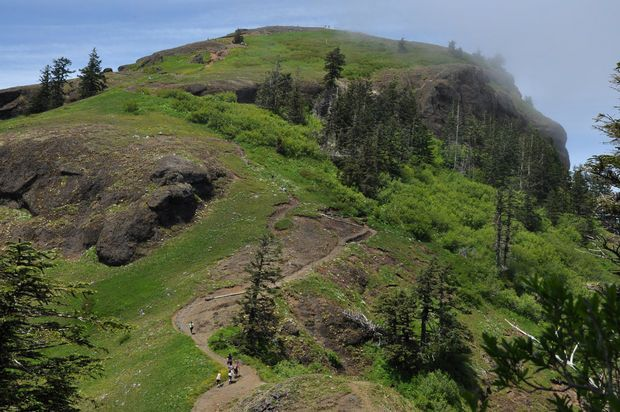 Saddle Mountain is primo hike in Clatsop County (photos): Astoria's 'bests' as chosen by readers   OregonLive.com