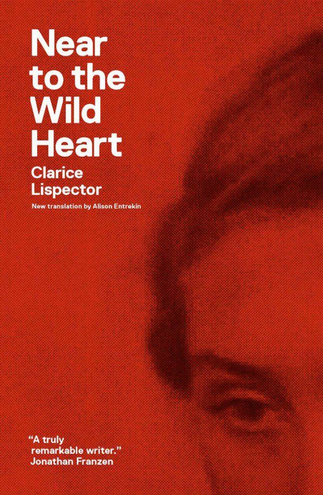 Near to the Wild Heart by Clarice Lispector. What does it mean to be an intelligent woman? Here we list women writers who speak out, and dare to look at the world through a different lens.
