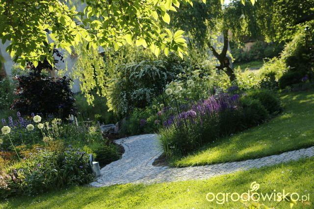 Pszczelarnia - strona 1691 - Forum ogrodnicze - Ogrodowisko
