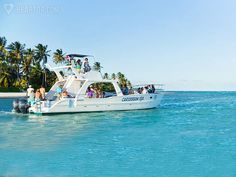 The 10 Best Excursions in Punta Cana to do in 2015