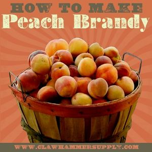 How To Make Peach Moonshine: Part 1