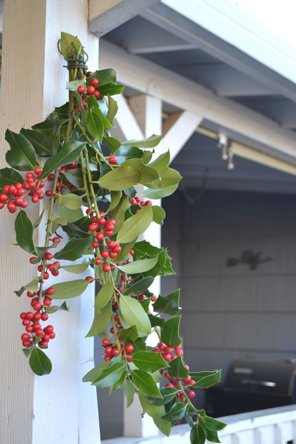 Outdoor Christmas Decorating Ideas Outdoor Christmas Decorations