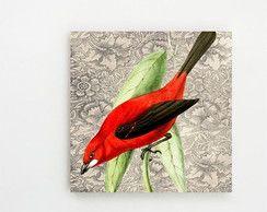 Quadro Decorativo Pássaros Do Brasil ll