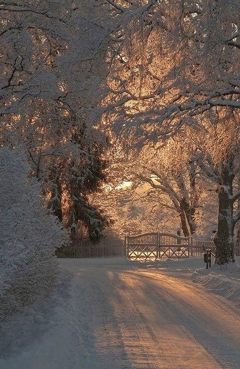 Norwegian winter. Beautiful
