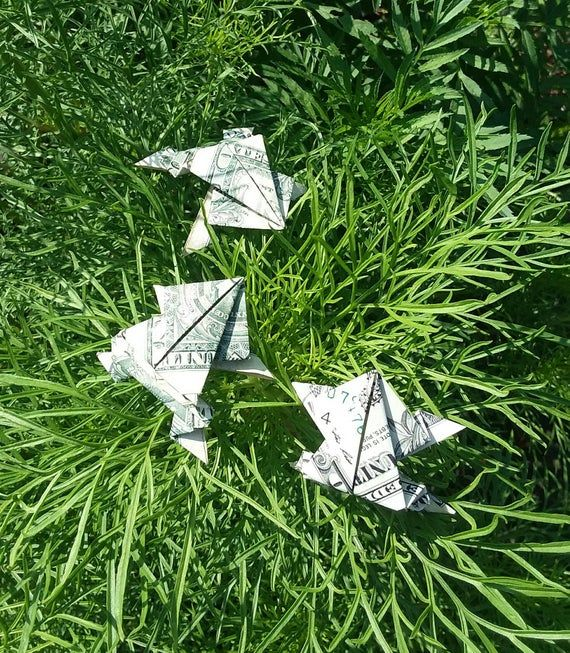 Dollar Bill Origami Animal – Money Jumping Frog