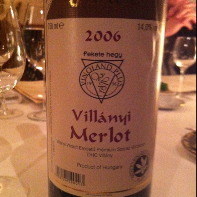 A great bottle of Hungarian Merlot from a dinner in Budapest at the WETM conference, March 2012.