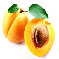 Apricot Health Benefits – Fruit Pulp, Apricot Seed, Apricot Oil