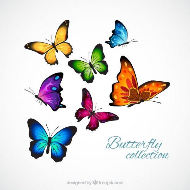 mariposas realistas y coloridos Vector Gratis