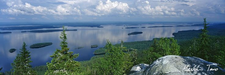 A view from Koli.   Koli National Park (Finnish: Kolin kansallispuisto) is a national park in the municipalities of Joensuu, Lieksa and Kontiolahti in the North Karelia region of Finland. It covers 30 square kilometres (12 sq mi) in the forested hills on the western shore of lake Pielinen, and was established in 1991.  Formerly, it was a sacrificial site. Later it was used for slash-and-burn agriculture. Photo: Markku Tano