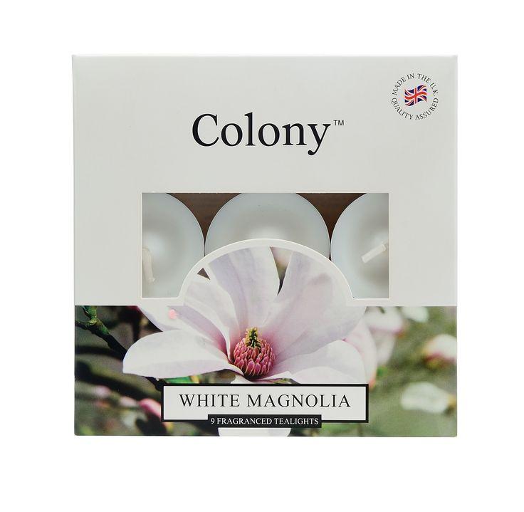 Wax Lyrical Colony white magnolia tea lights