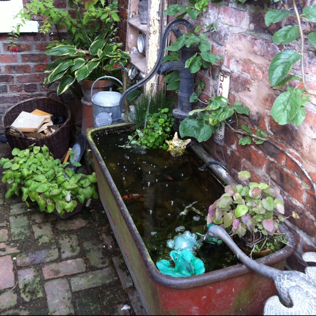 Old bath and water pump as outdoor fish tank
