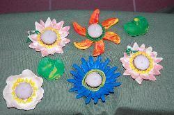 Hageland - Een waterlelie en andere drijvende bloemen