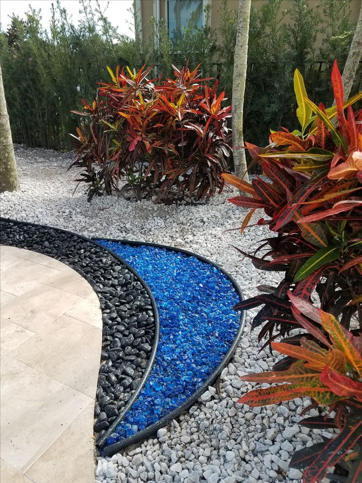 Blue Glass, Polished Black Stone, White Marble Chip stone with colorful Crotons against an evergreen backdrop of Podocarpus help to make this contemporary landscape design 'pop'. Hope you like  !    Universal Landscape, Inc.  www.universallandscapefl.com