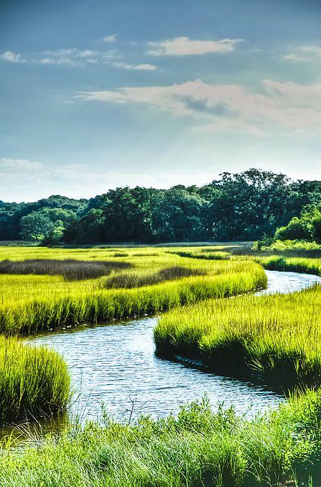 Lowcountry Creek - South Carolina. Lieu de rêve pour faire du Stand up paddling...