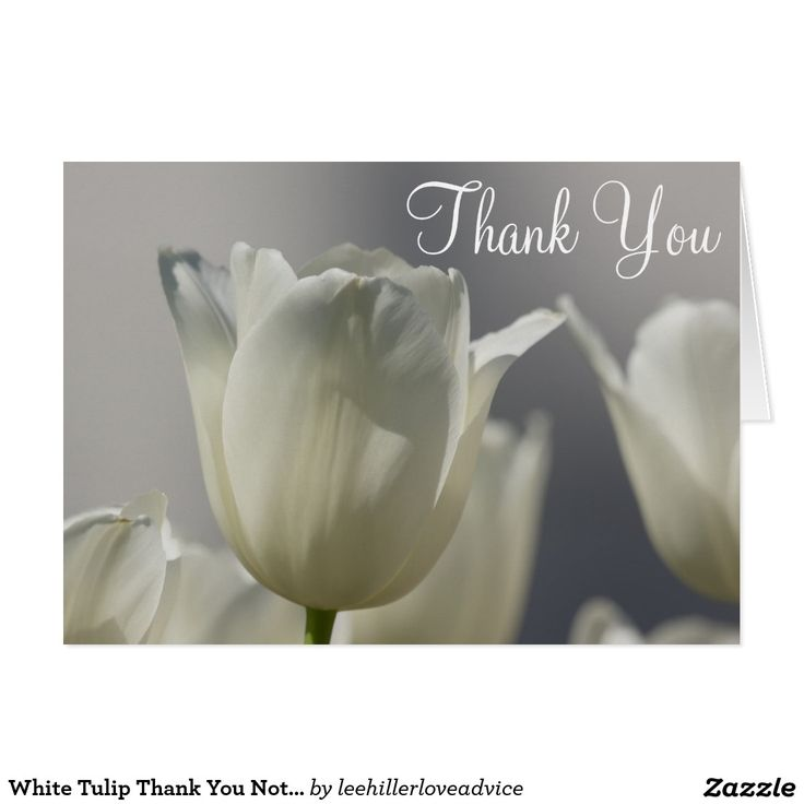 White Tulip Thank You Notes
