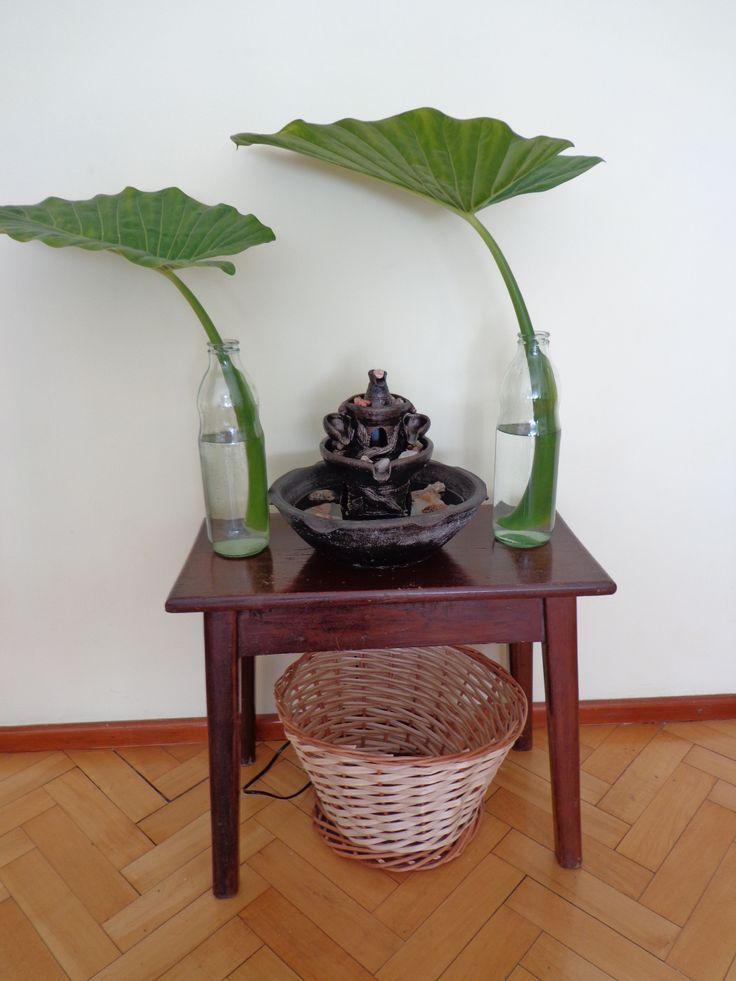 Poner una fuente de agua con hojas verdes para dar - Hojas de decoracion ...