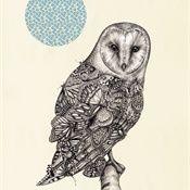 Lauren Mortimer: Butterfly, Butterflies, Illustrations, Art, Owl, Mortimer Illustration, Laurenmortimer