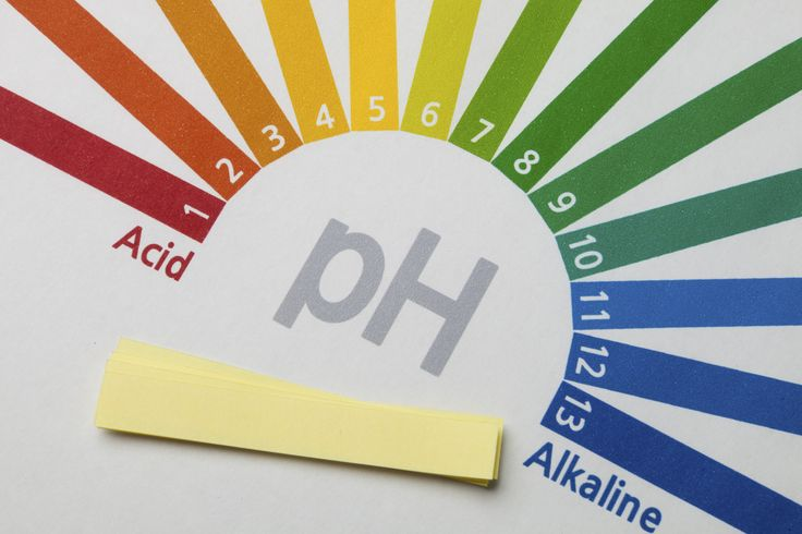 Kris Carr explains why pH balance in the body is essential with high alkaline foods and an acid alkaline balance through a ph balanced diet.
