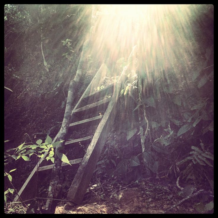 Stairs to Heaven - Sunset in Camaguan Farm