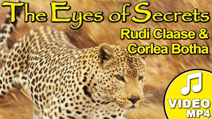 The Eyes of Secrets, also known as the theme song of the Shayamanzi leopard mystery project, has been performed by a variety of famous artists which includes Bobby van Jaarsveld, Sonja Herholdt , Corlea Botha as well as Rudi Claase. This song, written by Rudi Claase, is used as a message to the people to protect these beautiful and majestic animals. BUY it now on www.leopard.tv! #music #shayamanzi #leopardtv