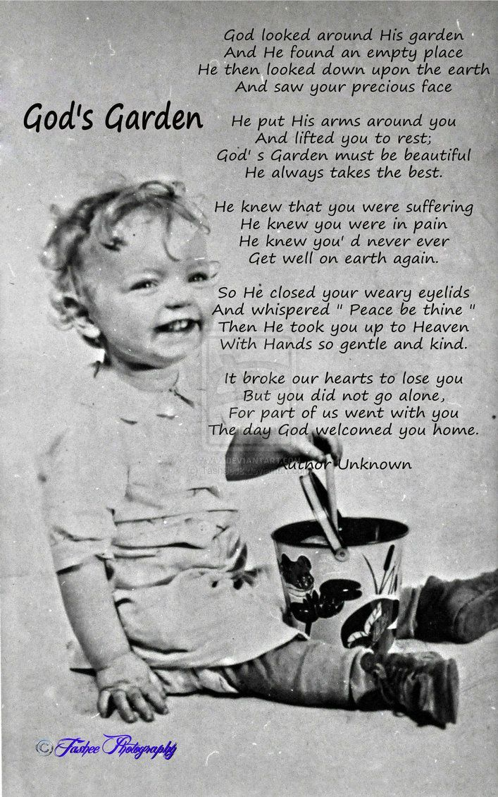 God's Garden    Poem's Author~Unknown    Originally created for my Father Funeral (The Little Boy in the Photo is my Father) Original idea for creation by Katherine Nichole  Recreated by Tashee Photography