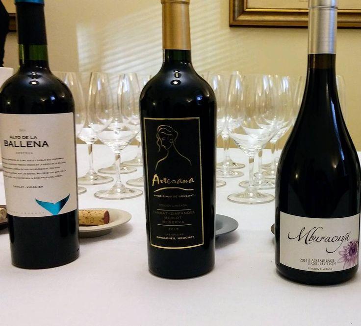 Tänään Uruguayn suurlähetystössä suurlähettilään seurassa vinejä maistelemassa. #viini#wines#winelover#winegeek#instawine#winetime#wein#vin#winepic#wine#wineporn herkkusuu #lasissa #Herkkusuunlautasella