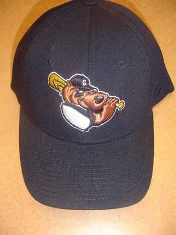 Gateway Grizzlies Official Hat