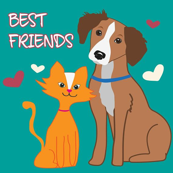 illustrazione cane e gatto... i migliori amici di sempre