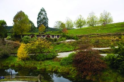 For the Lord of the Rings fans out there - stay in a Hobbit Motel - a hobbit hole for humans at Woodlyn Park, Kiwi Culture Show & Waitomo Motels, Otorohanga. http://www.aatravel.co.nz/main/listing.php?listingId=16506