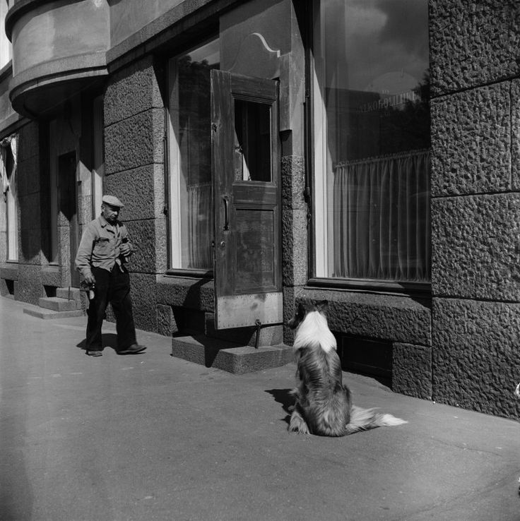 Alkoholiliike, Museokatu 10. - Finna - Helsingin kaupunginmuseo