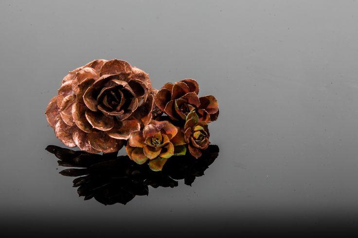 Copper Cast Succulent